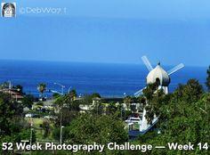 Week 14 -- Landscape: Zoomed In