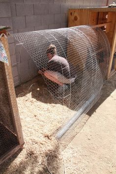 Chicken tunnel supported by masonry ladders. Never heard of masonry ladders before. --- I like the idea, but a different door system and bricks lining the bottom to keep predators out. Cheap Chicken Coops, Portable Chicken Coop, Best Chicken Coop, Backyard Chicken Coops, Chicken Coop Plans, Building A Chicken Coop, Chickens Backyard, Keeping Chickens, Raising Chickens