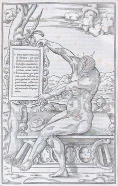Estienne Charles - De dissectione partium corporis humani libri tres. 1 vol. 1545 Un des plus beaux traités français d'anatomie. Rare.