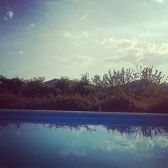 La lepre e la piscina
