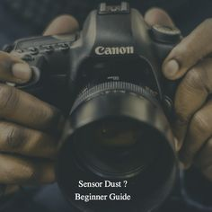 Dslr Camera - Photography Tips You Have To Know About Dslr Photography Tips, Photography Equipment, Photography School, Photography Tutorials, Wildlife Photography, Landscape Photography, Portrait Photography, Wedding Photography, 35mm Digital Camera