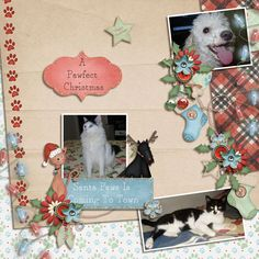 Material used Santa Paws Collection by Loucee Creations (can be found at Pickleperrypop: https://www.pickleberrypop.com/shop/product.php?productid=35015&cat=0&page=1; TheStudio: http://www.digitalscrapbookingstudio.com/store/loucee-creations-c-13_388/santa-paws-collection-dsd-grab-bag-p-31830.html and Digiscrappers Brasil: http://store.digiscrappersbrasil.com.br/santa-paws-collection-dsd-grab-bag-p-8082.html);  Photos my pets.
