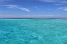 Turquoise waters in Indian Ocean #Maldives #travel #beach #indianocean #seasonparadise #vacation #getaway #destination #bucketlist