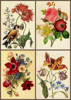 ArtbyJean - Vintage Clip Art: Four Vintage Prints - Collage Sheet