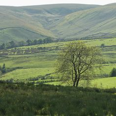 Forest of Bowland, Lancashire, England Pictures Of England, Encaustic Art, Cumbria, Farm Life, Live Action, Us Travel, Walks, Countryside, Landscape Photography