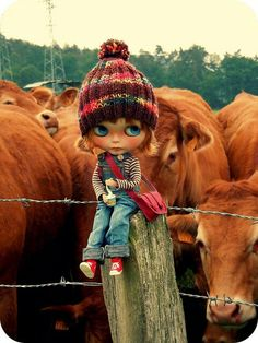 Country Blythe (like the background photo lol)