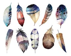 Watercolor Boho Feathers Clipart Set of 10 High Quality PNG