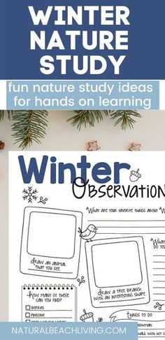 Nature Activities, Hands On Activities, Preschool Activities, Outdoor Learning, Charlotte Mason, Nature Study, Field Guide, Walking In Nature, Winter Theme