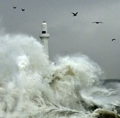 """Stewart Mitchell: Angry seas, Aberdeen,   Scotland.  """"At the outer breakwater of Aberdeen Harbour, the waves from the   south-easterly, October gale pound the lighthouse in dramatic   fashion."""""""