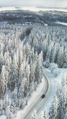 Snowy forest in Finland Helsinki, Winter Szenen, Winter Magic, Winter White, Snowy Day, Snow Scenes, Winter Beauty, Winter Landscape, Wonders Of The World