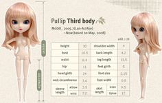 PULLIP - PULLIP MEASUREMENTS - type-3 and all other types of body (1-4).