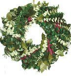 Sunrise Safari Eucalyptus Wreath - 17in by Maple Ridge Decor. $45.99. The Sunrise Safari Eucalyptus Wreath. An exciting match of color, form and texture with Baby Spiral Eucalyptus, Willow Eucalyptus and Preserved Salal Leaves. Measures 17 inches across by 4 inches deep.   This is a Preserved Wreath. Great for indoor use and they look wonderful, but are not recommended for outdoors or if they are to be exposed to High Humidity or Heat. Wreaths may bleed colors on to wa...