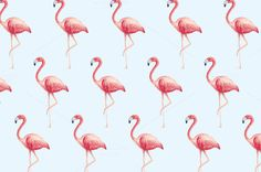 flamingo background vector by lyeyee on @creativemarket