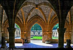 Chapter house of the Orval Abbey,Cisterian monastery, Ardennes, Belgium