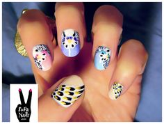 budgie nails