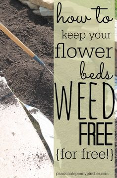 to Keep Your Flower Beds Weed-Free (for free!) How to Keep Your Flower Beds Weed-Free (for free!)How to Keep Your Flower Beds Weed-Free (for free! Garden Weeds, Lawn And Garden, Garden Plants, Garden Fun, Garden Types, Organic Gardening, Gardening Tips, Gardening Books, Gardening Vegetables