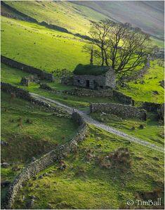 wanderthewood:    Hartsop Cumbria England by timballic