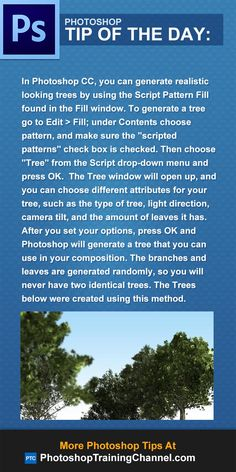 In Photoshop CC, you can generate realistic looking trees by using the Script Pattern Fill found in the Fill window. To generate a tree go to Edit > Fill, under Contents choose pattern, and make sure the 'scripted patterns' check box is checked. Then choose 'Tree' from the Script drop-down menu and press OK.  The Tree window will open up, and you can choose different attributes for your tree. After you set your options, press OK and Photoshop will generate a tree that you can use in your ...