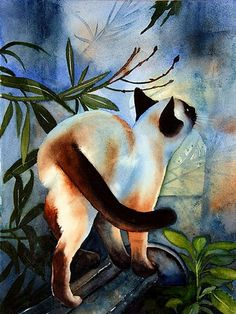 Cat art by Solveig Rimstad. Illustration Photo, Illustrations, I Love Cats, Crazy Cats, Siamese Cats, Cats And Kittens, Image Chat, Gatos Cats, Watercolor Cat