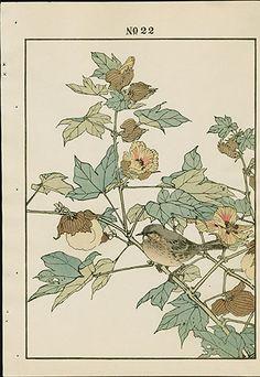 1891 Keinen Imao Woodblock 1st Edition Birds & Flowers Japan