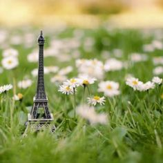 Your tower and my flower =)
