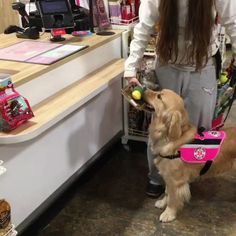 Good girl gets to pick her own christmas present http://ift.tt/2ilc7sX