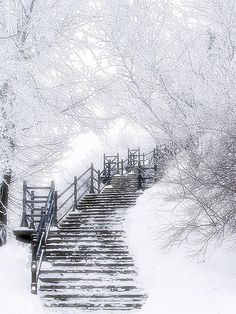 enchanting snowy stairwell.