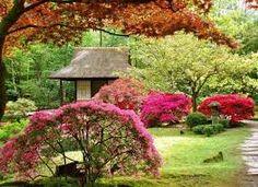 Resultado de imagem para jardin japonais