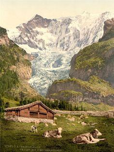 VINTAGE PHOTO LANDSCAPE VISCHERHORN ALPINE SWITZERLAND CHALET FINE ART PRINT POSTER 30x40cm CC2367: Amazon.co.uk: Kitchen & Home  £7.00