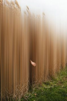 Ellen Jantzen's Arresting Photo series 'Disturbing The Spirits' Fine Art Photography, Motion Blur Photography, Spirit Photography, Conceptual Photography, Landscape Photography, Experimental Photography, Creative Photography, Photography Ideas, Photo Manipulation