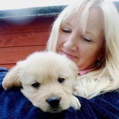 #dog #pet #puppy