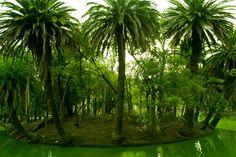 Green Island - Made Lissidini Photography