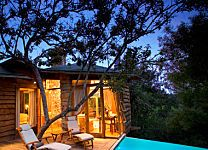 World's Coolest Tree-House Hotels