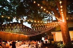 Luces Outdoor backyard lights, strung from a single tree Backyard String Lights, Backyard Trees, Backyard Lighting, Deck Lighting, Backyard Landscaping, Wedding Lighting, How To Hang Patio Lights, Lights On Deck, Outside Lighting Ideas