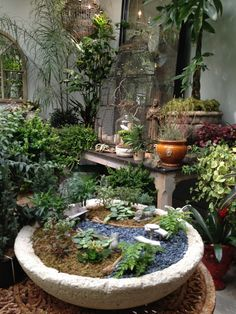 vignette design: Bliss Home And Design fairy garden Miniature Plants, Miniature Fairy Gardens, Ideas Para Decorar Jardines, Vignette Design, Bliss Home And Design, Plantar, Garden Structures, Beautiful Gardens, Beautiful Space