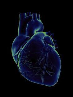 Miocarditis: una enfermedad crónica que afecta al miocardio Afecta a las células que forman el tejido del corazón http://enfermedadescorazon.about.com/od/tipos-enfermedades-corazon/a/que-Es-una-Miocardiopatia.htm