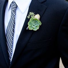 Or maybe get succulents into the wedding this way? Succulent Groomsmen Boutonnieres