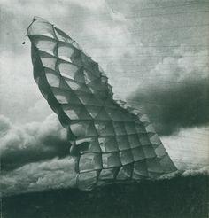 [ 96 notes ] dansleparadisartificiel: Wind Sculpture by Daniel Graffin Textile Texture, Textile Fiber Art, Textile Artists, Another Green World, Wind Sculptures, Sculpture Garden, Organic Art, Textiles, Land Art