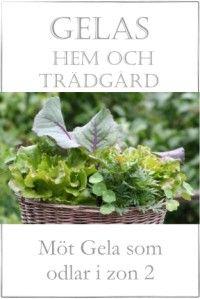 Gelas Hem och Trädgård