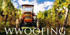 WWOOFing is a great way to travel for free and help out local organic farmers along the way!