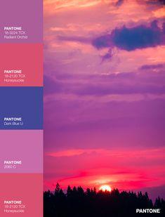 Palettes / Color : No. 20 Palette, Sunset Colors, Gradient Color, Dusk, Art Inspo, Branding, Colours, Interior, Youtube