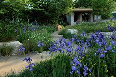 Deze familietuin is avontuurlijk. Een slingerend pad van natuursteen, twee vijvers met een waterloopje ertussen. Achterin een veranda. Voor elk gezinslid heeft deze tuin iets te bieden.