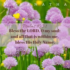 Psalms 103:1 (KJV)  Bless the LORD, O my soul: and all that is within me, bless his holy name. Bless the LORD, O my soul, and forget not all his benefits: MARANATHA