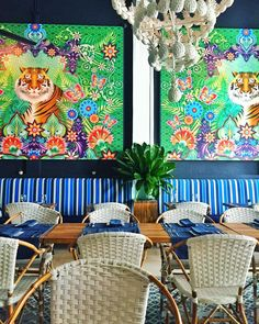 Maria. Cartagena. Ceviche with a side of tigers.  #cartagenalafantastica