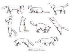 Cat Animal Pose References. Resources for Art Students / Art School Portfolio Work at CAPI ::: Create Art Portfolio Ideas at milliande.com , How to Draw Cats