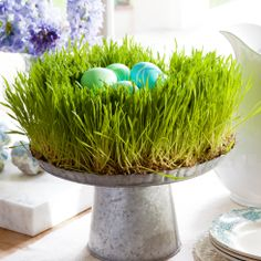 Beautiful idea! Wheatgrass & a cake stand make for a great easter centerpiece. Vielleicht auch mit Kresse?!