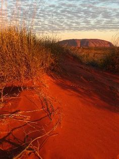 Uluru #Australia  Beautiful scenery!