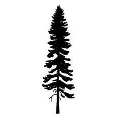 Pine Tattoo, Tree Tattoo Arm, Tree Tattoos, Small Tattoos, Redwood Tattoo, Tree Sillouette, Island Tattoo, Clip Art Library, Tree Clipart