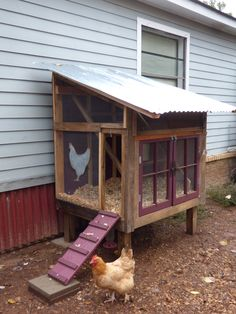 """This month's """"Cool Coop"""" is a great example of a doableDIY project. With some basic carpentry skills and determination, I think a lot of our readers could tackle this construction and create an equally functional and attractive coop.Our featured chicken keeper, Vicky of Texas, built this """"Rustic / Whimsical Coop"""" out of re-purposed, left-over, donated …"""