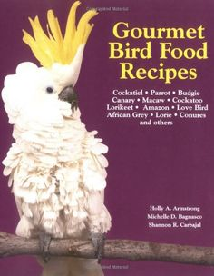 20% cut off Gourmet Bird Food Recipes (Pet Care Books)